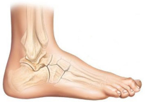 hammertoe-mid-south-foot-ankle
